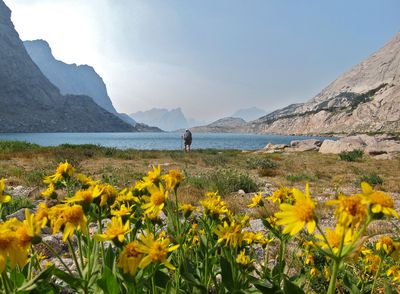 A student stops while backpacking at a lake ringed with blooming wildflowers and rocky peaks.